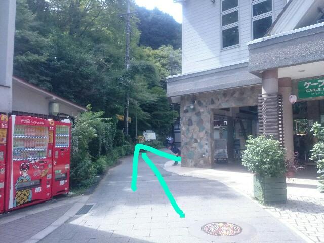 f:id:toutsuki:20190925112816j:image