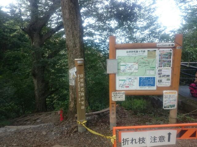 f:id:toutsuki:20190926083453j:image