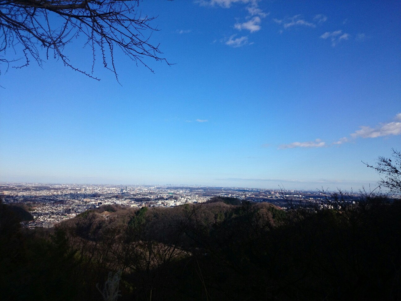f:id:toutsuki:20200101152017j:image