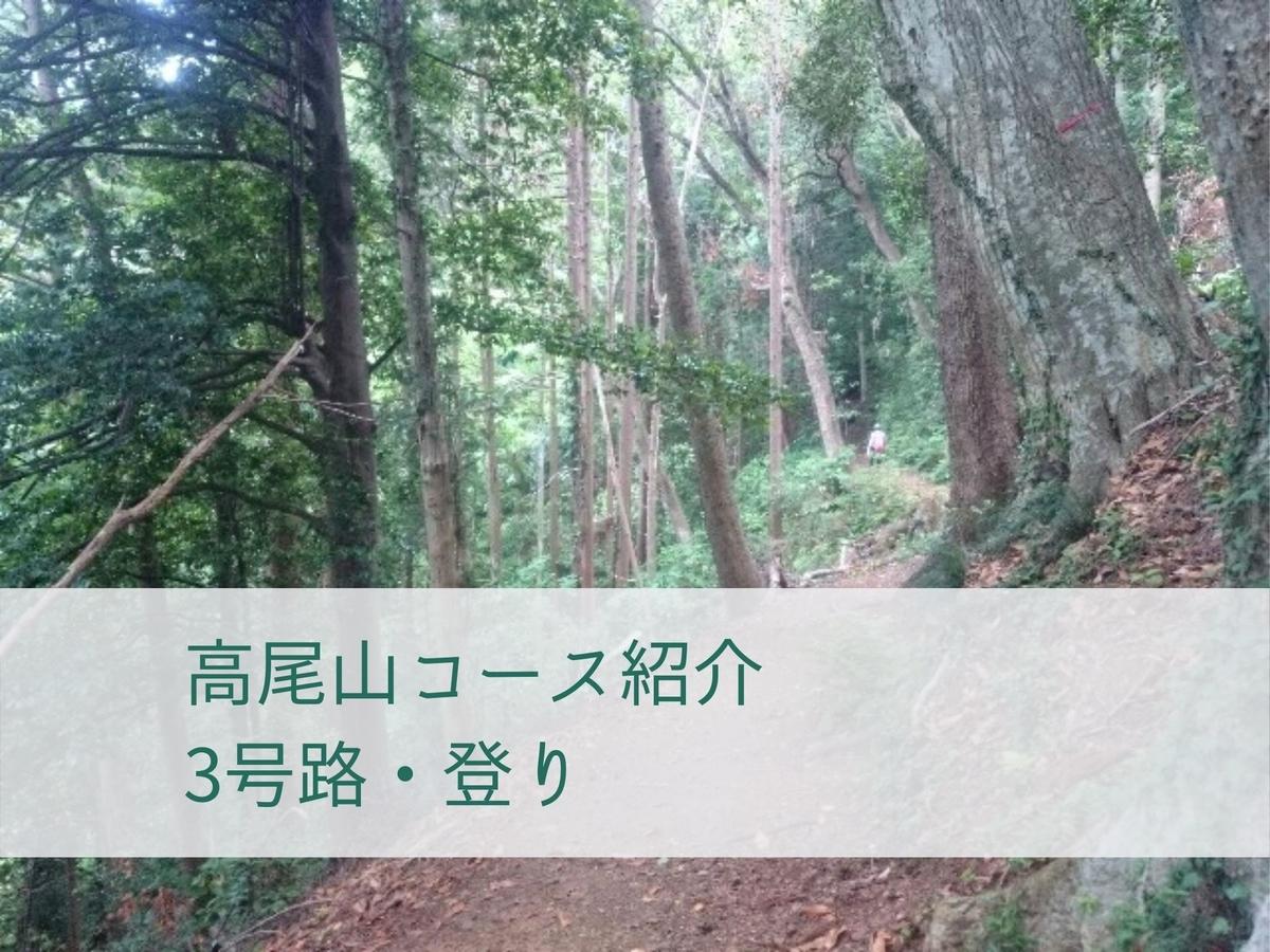 f:id:toutsuki:20200104160138j:plain