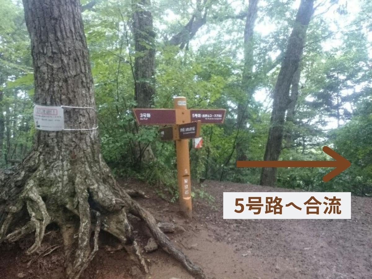f:id:toutsuki:20200104160754j:plain