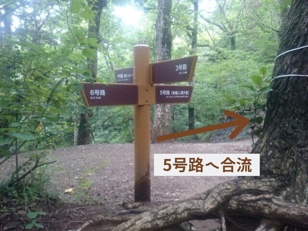 f:id:toutsuki:20200112154522j:plain