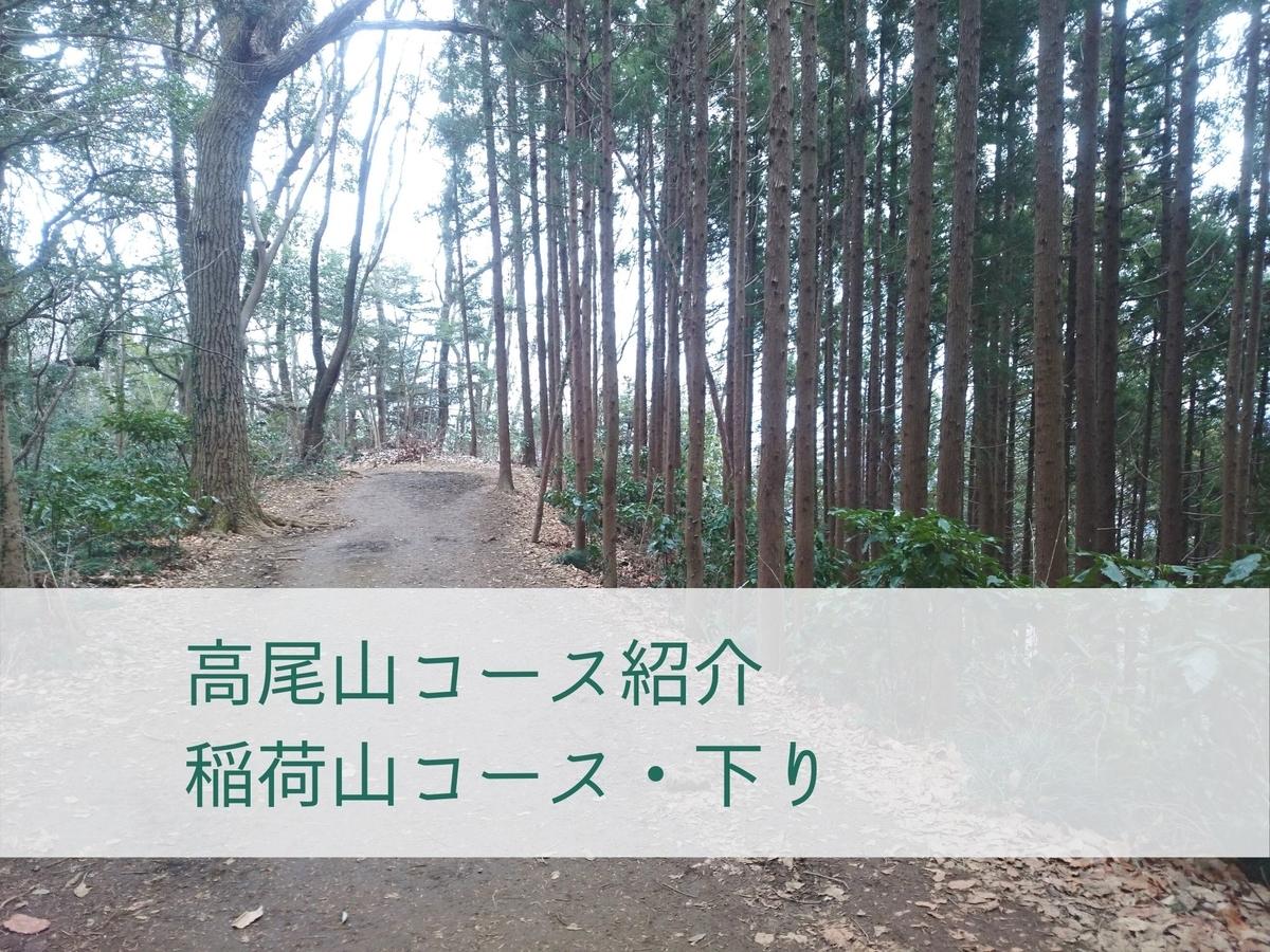 f:id:toutsuki:20200206215055j:plain