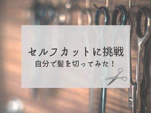f:id:toutsuki:20200519142724j:plain