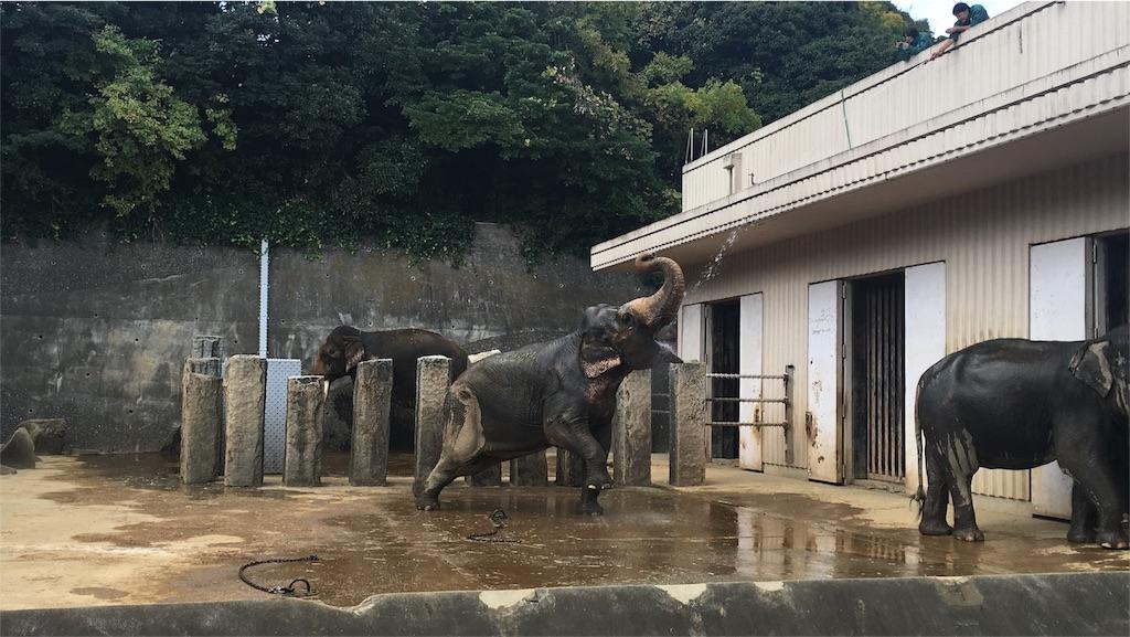 f:id:towanitomoni:20161113212820j:image