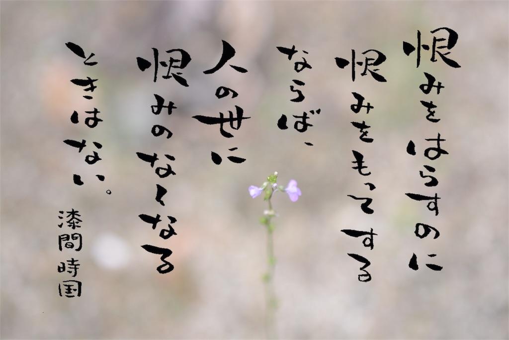 f:id:towarebito:20170116194350j:image