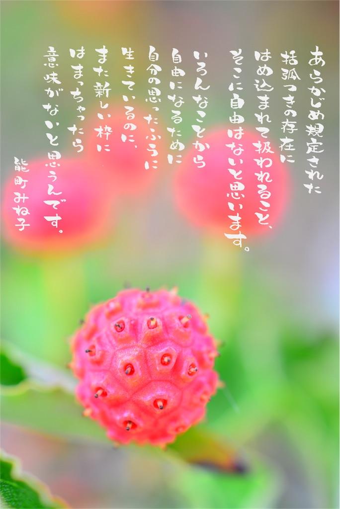 f:id:towarebito:20170303123035j:image