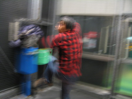 f:id:towelman:20120121194403j:image