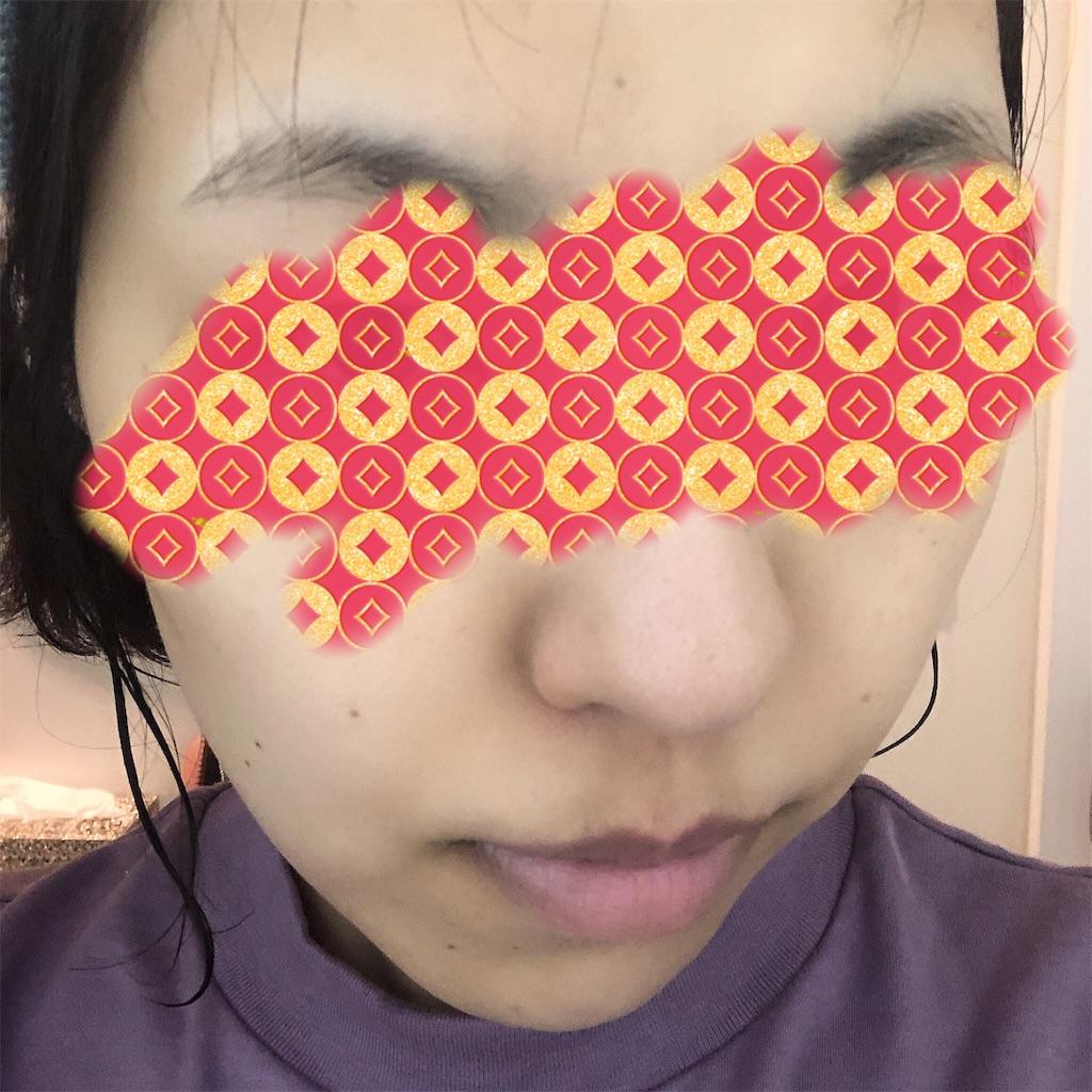 f:id:toxic-chia:20190530102137j:image