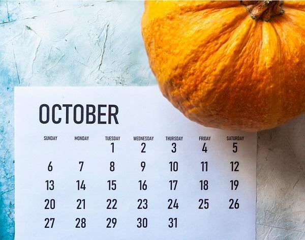 2019年10月カレンダーとかぼちゃ