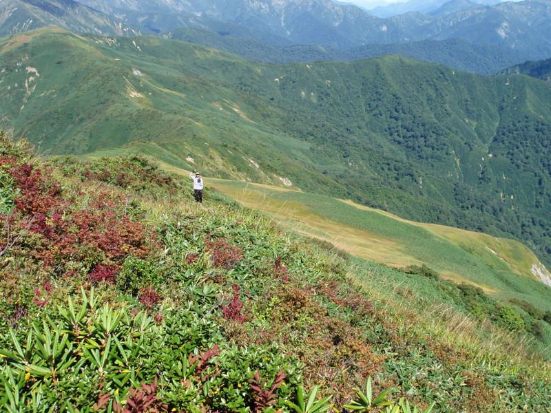 f:id:toyama-rouzan:20100927205049j:image:w300