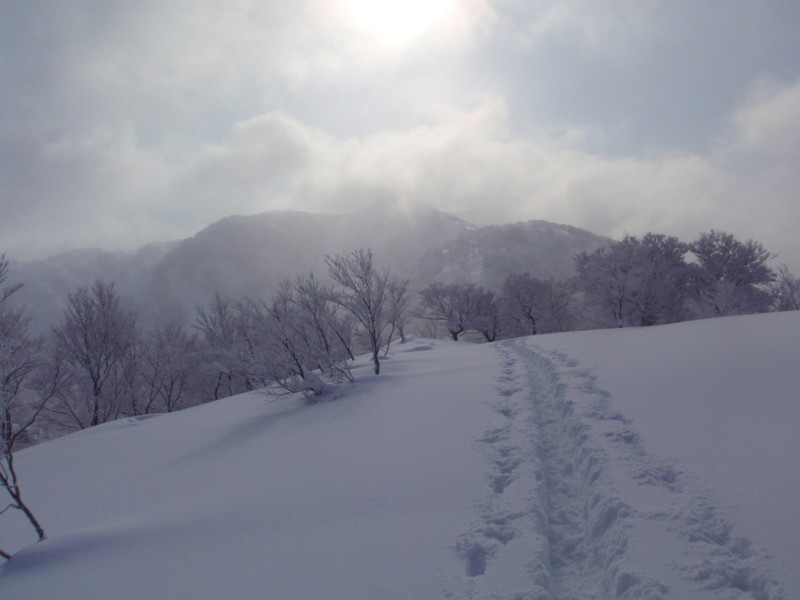 f:id:toyama-rouzan:20120131043635j:image:w300
