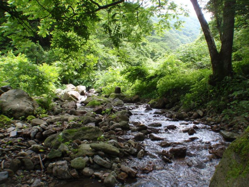 f:id:toyama-rouzan:20120625230150j:image:w300
