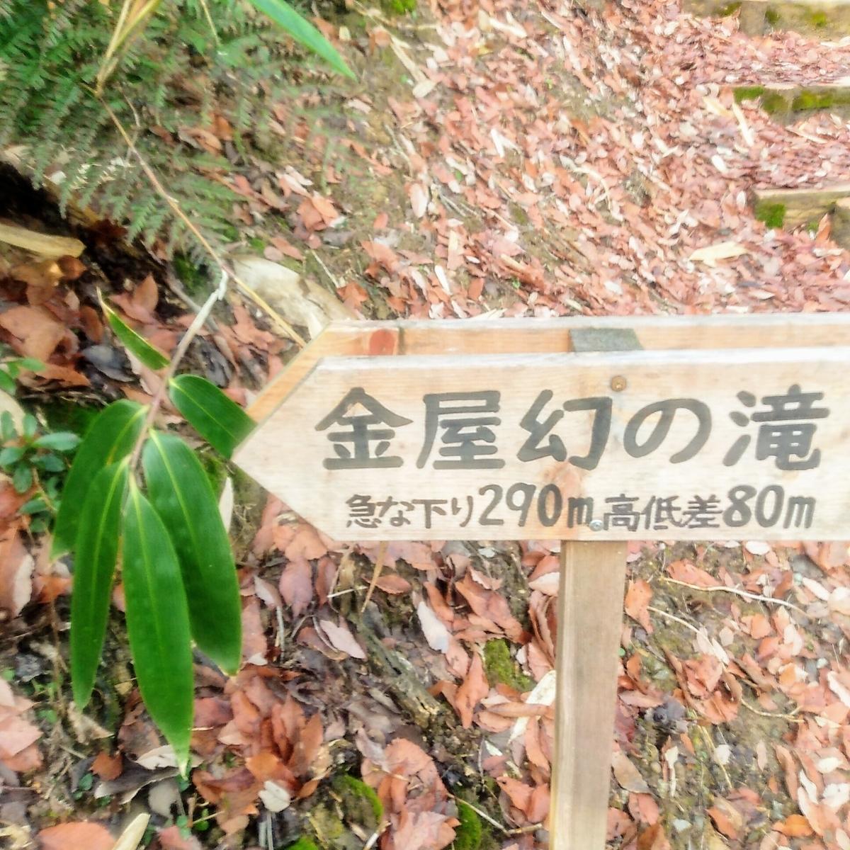 f:id:toyamayama:20200105134839j:plain