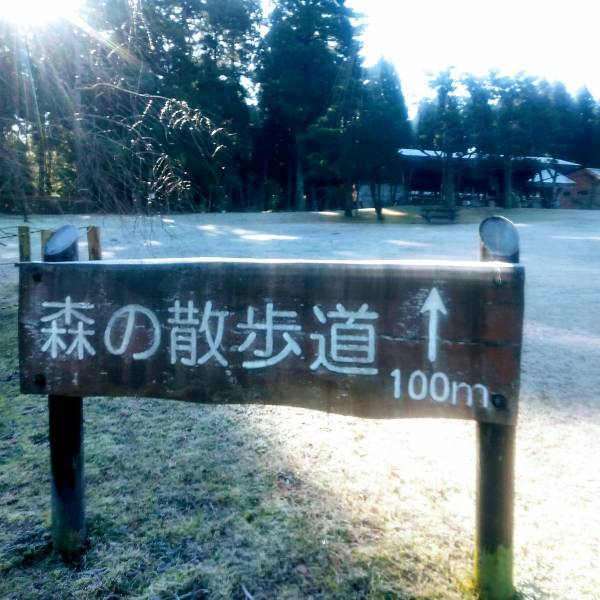 f:id:toyamayama:20200212082107j:plain