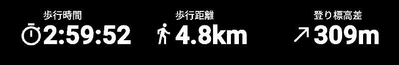 f:id:toyamayama:20200307155838j:plain