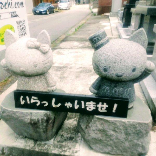f:id:toyamayama:20200610144711j:plain