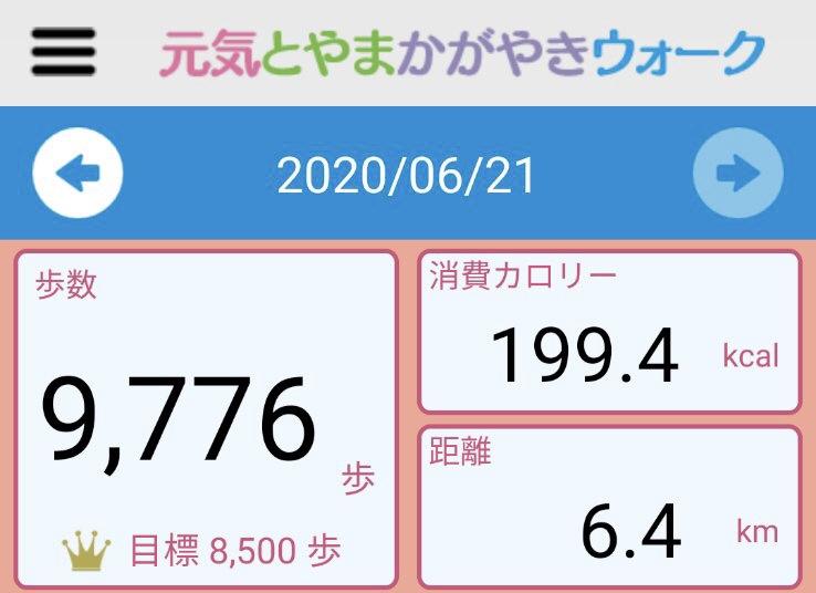 f:id:toyamayama:20200621164123j:plain