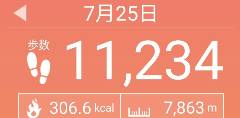 f:id:toyamayama:20200725125756j:plain
