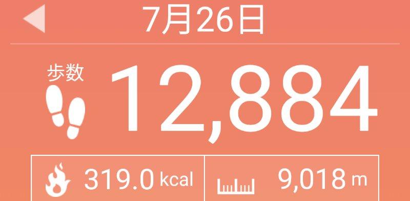 f:id:toyamayama:20200726133948j:plain
