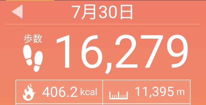 f:id:toyamayama:20200730165226j:plain