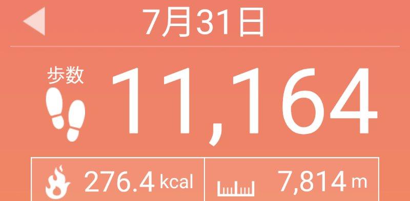 f:id:toyamayama:20200731151939j:plain