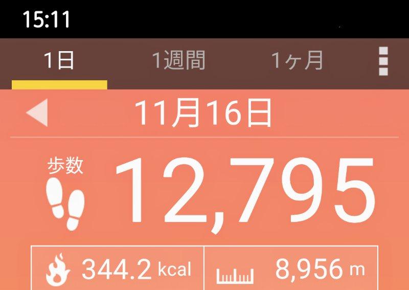 f:id:toyamayama:20201116151500j:plain