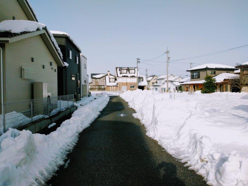 f:id:toyamayama:20210115114204j:plain