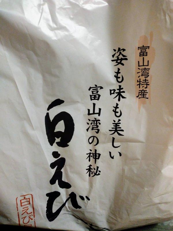 f:id:toyamayama:20210203024626j:plain