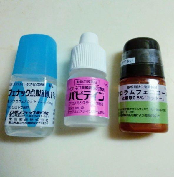 f:id:toyamayama:20210203044955j:plain