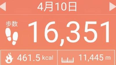 f:id:toyamayama:20210418131648j:plain