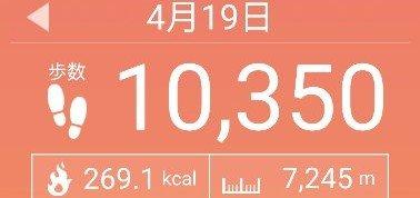 f:id:toyamayama:20210419151357j:plain