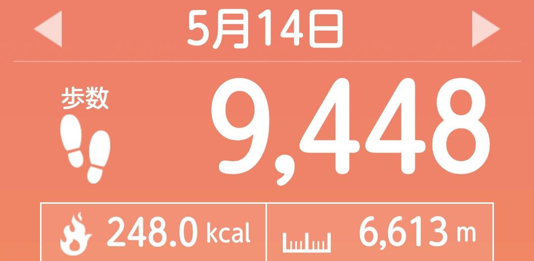 f:id:toyamayama:20210516054349j:plain
