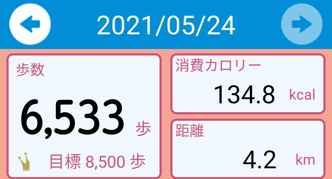 f:id:toyamayama:20210525042524j:plain