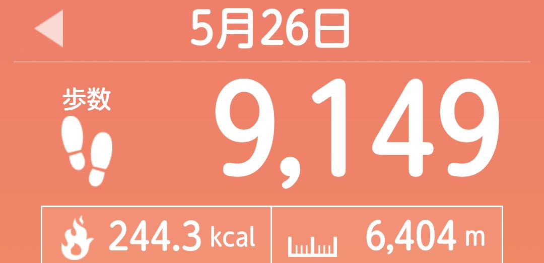 f:id:toyamayama:20210526154337p:plain