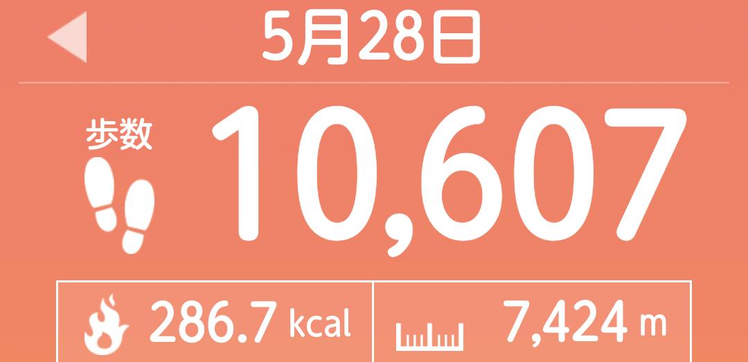 f:id:toyamayama:20210528181948p:plain