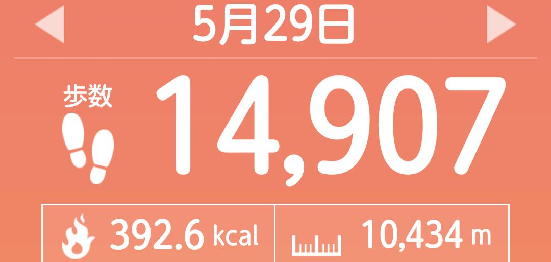 f:id:toyamayama:20210530045726p:plain