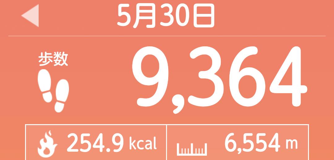 f:id:toyamayama:20210530150036p:plain