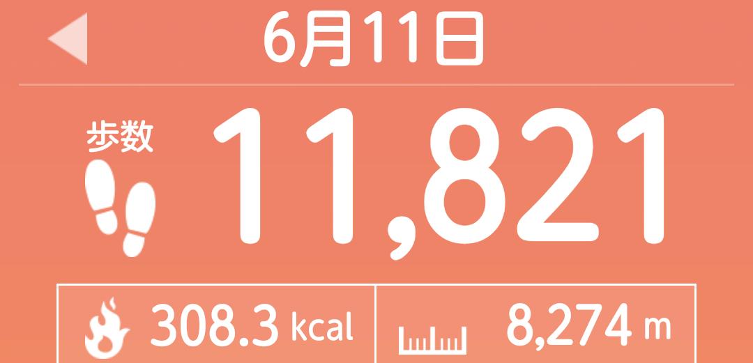f:id:toyamayama:20210612024859p:plain