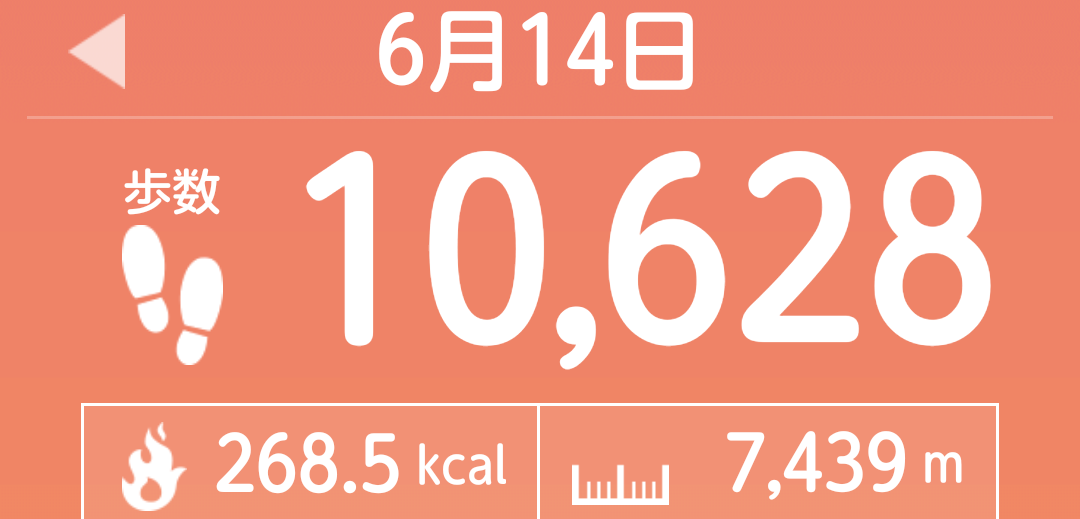 f:id:toyamayama:20210615041803p:plain