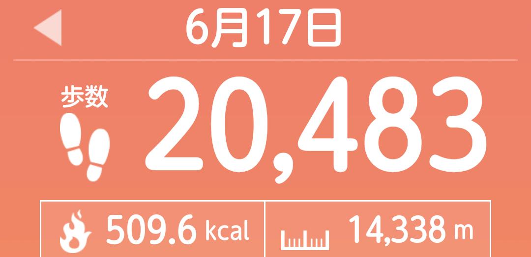 f:id:toyamayama:20210617151537p:plain