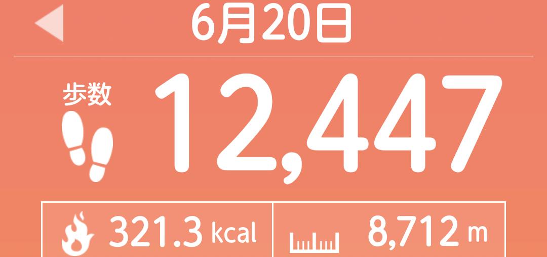 f:id:toyamayama:20210620150413p:plain