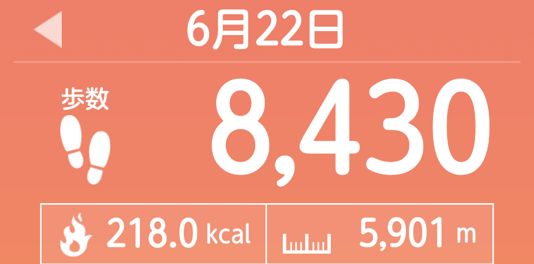 f:id:toyamayama:20210623035333p:plain