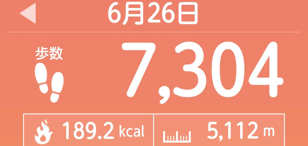 f:id:toyamayama:20210626161315p:plain