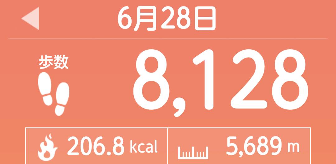 f:id:toyamayama:20210628151130p:plain