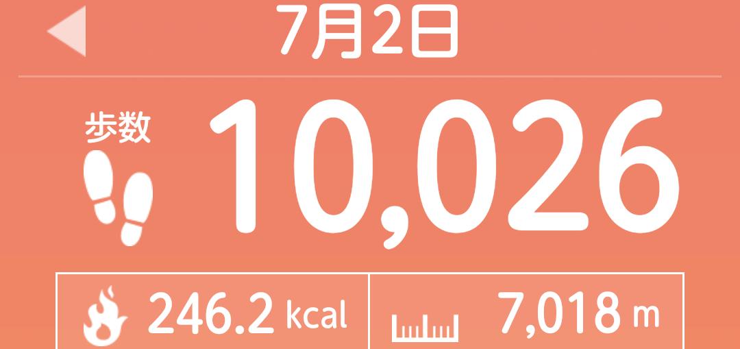 f:id:toyamayama:20210703034615p:plain