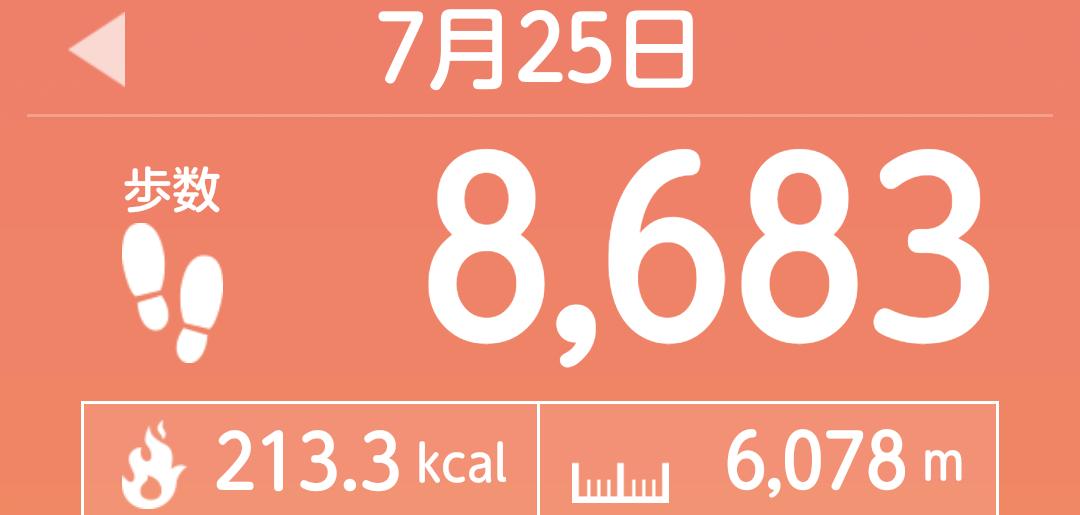 f:id:toyamayama:20210725132433p:plain