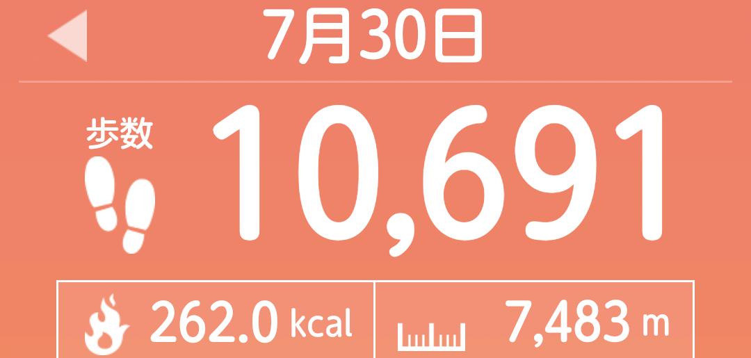 f:id:toyamayama:20210730151515p:plain