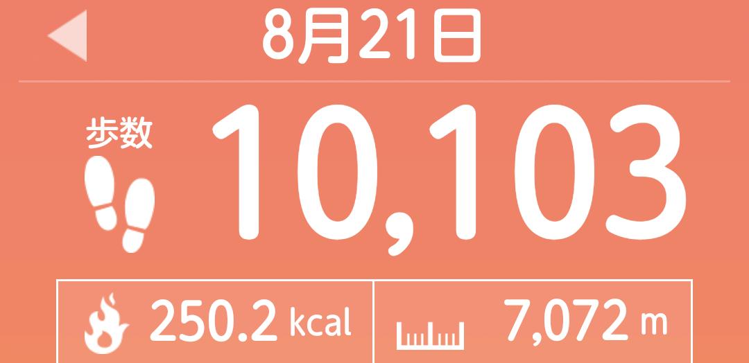 f:id:toyamayama:20210821185325p:plain