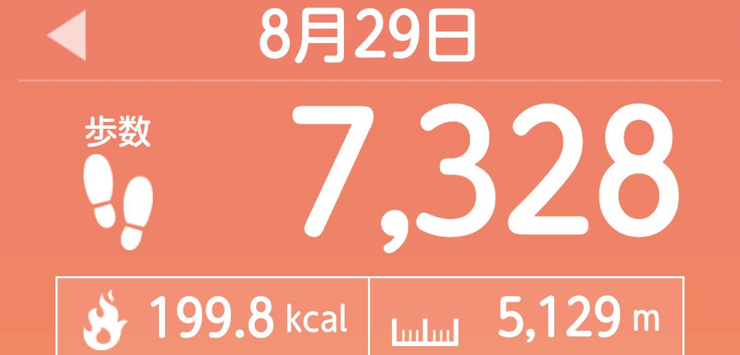 f:id:toyamayama:20210829101635p:plain